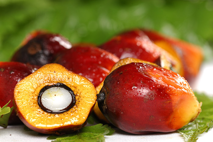 Чем вредно пальмовое масло